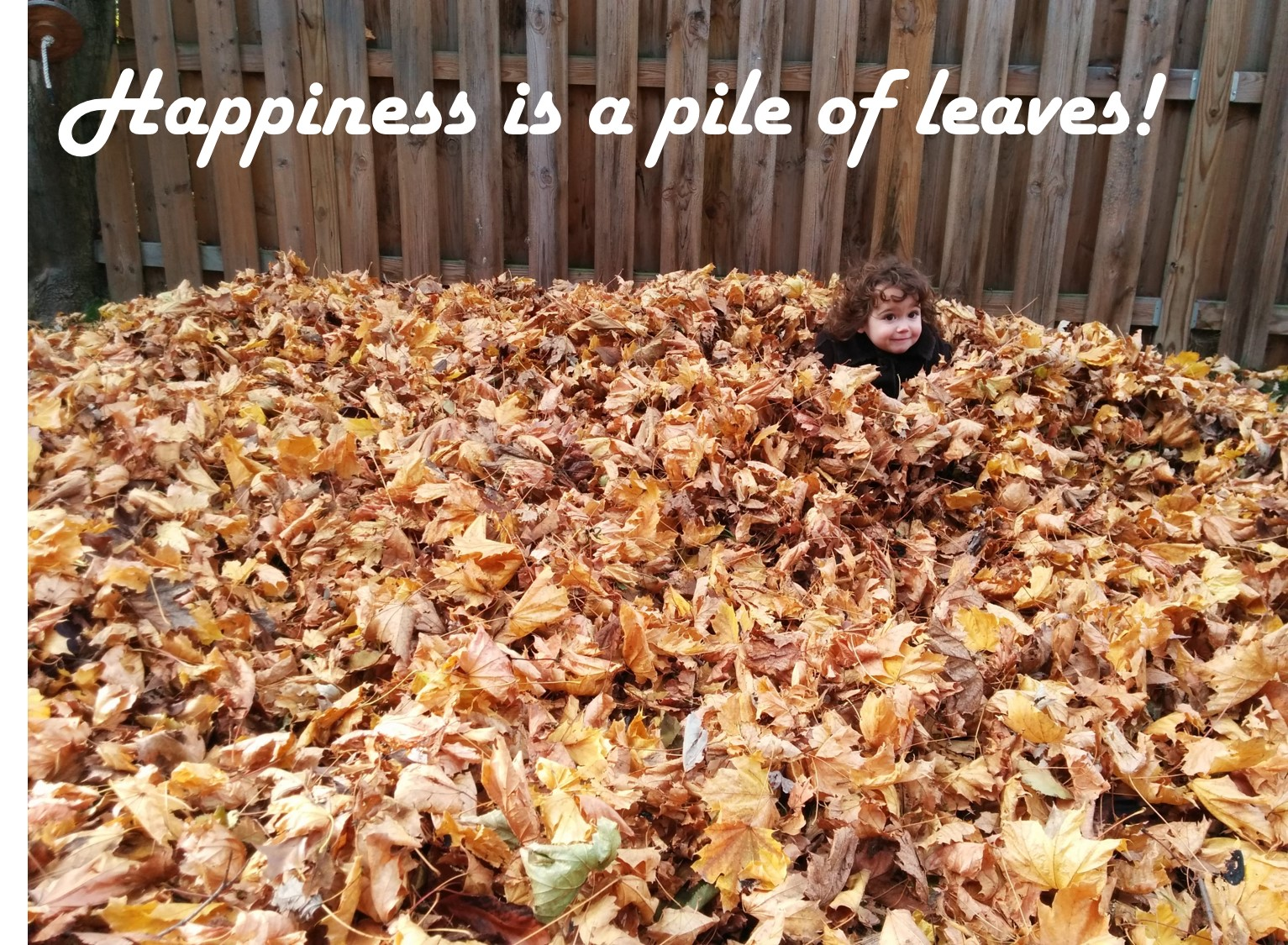 happiness-is-a-pile-of-leaves