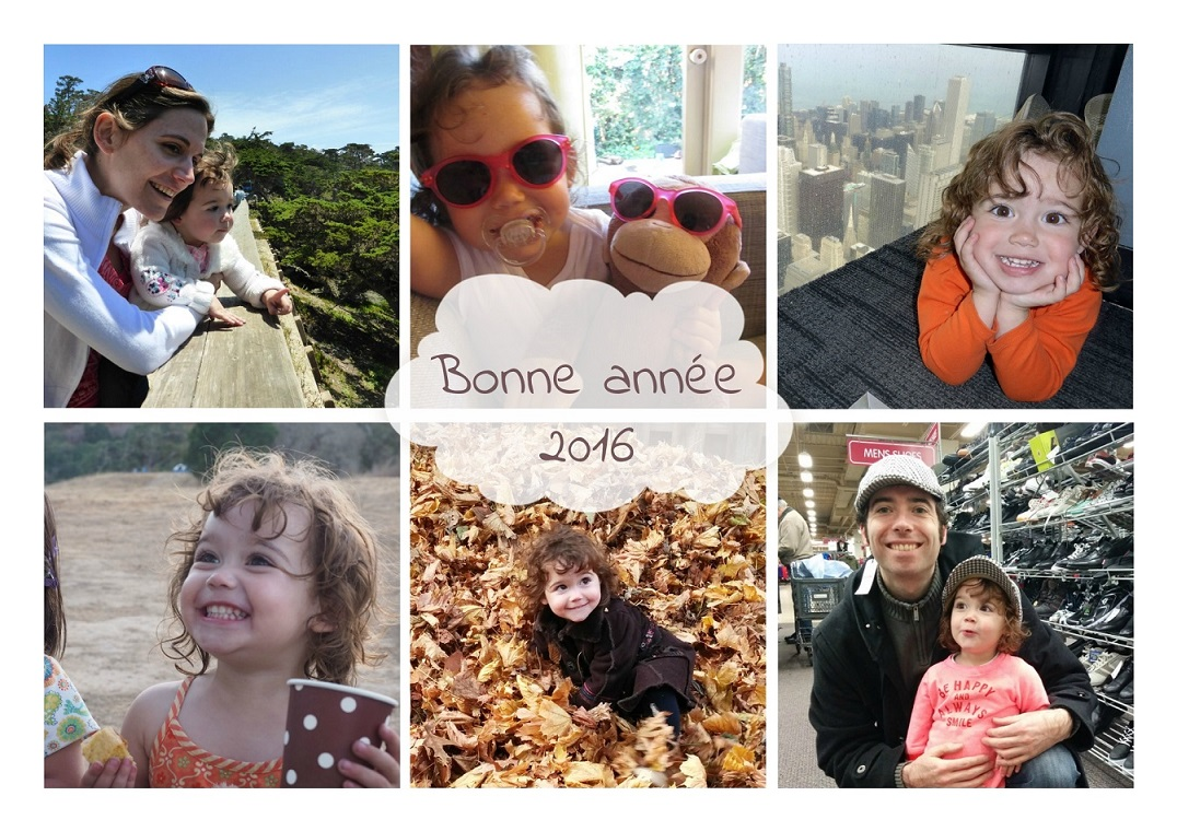 bonne-annee-2016-1