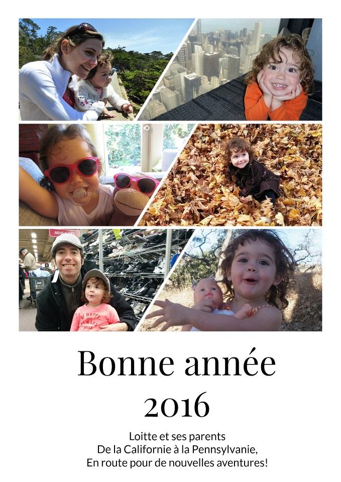 bonne-annee-2016-4