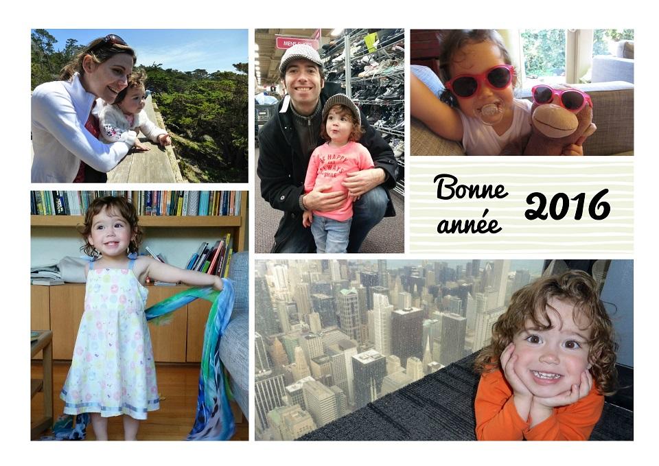 bonne-annee-2016-6-2